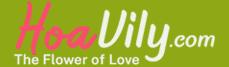 Shop hoa tươi Hoavily.com | Đặt hoa giao SIÊU TỐC 63 tỉnh thành