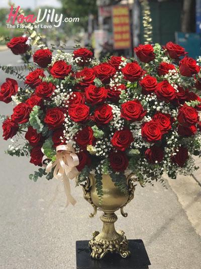 Bình hoa hồng Ecuador - Trái tim ấm áp