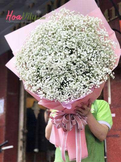 Bó hoa baby Hà Lan đốn tim nàng
