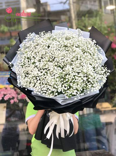Bó hoa baby - Niềm vui của em
