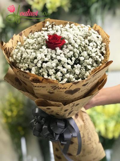 Bó hoa baby - Tình yêu thăng hoa