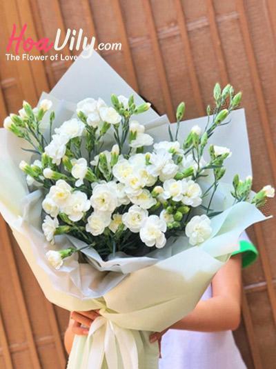Bó hoa cẩm chướng - Sắc nở