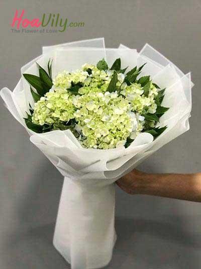 Bó hoa cẩm tú cầu - Loài hoa em yêu thích
