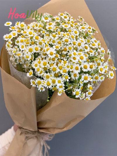Bó hoa cúc tana - Người anh thầm yêu