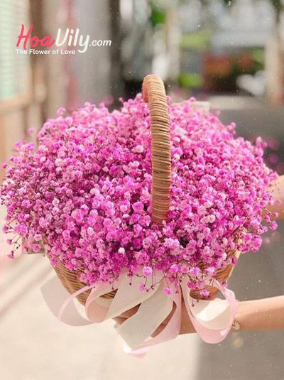 Giỏ hoa baby hồng - Giấc mơ hoa