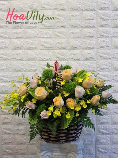 Giỏ hoa chúc mừng - Khúc ngẫu hứng