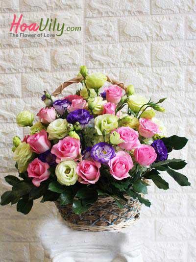 Giỏ hoa đẹp - Vườn nắng