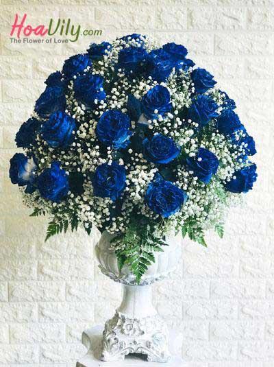 Hoa cao cấp- Bình hoa hồng xanh Ecuador