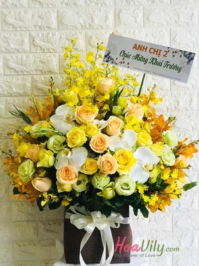 Hoa chúc mừng - sắc vàng rực rỡ