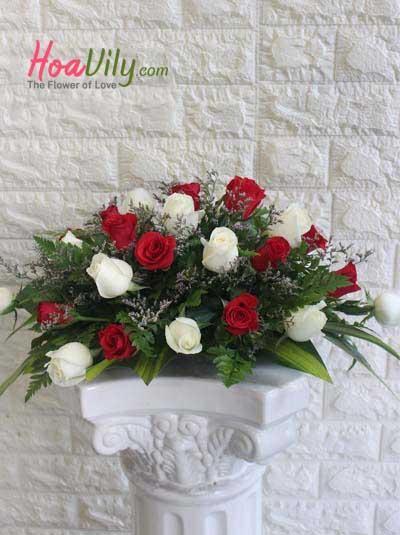Hoa để bàn - Hoa hồng duyên dáng