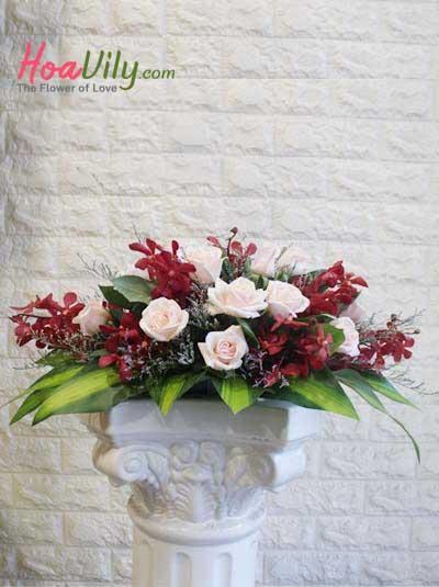 Hoa để bàn - Hồng dịu dàng