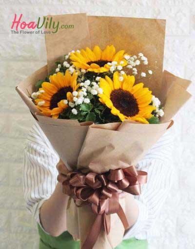 Hoa hoa hướng dương kết hợp baby Hà Lan