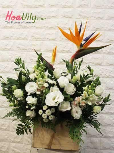Hoa hộp gỗ- Chào ngày tươi sáng