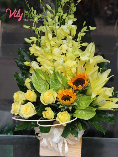 Hoa hộp gỗ- Dành tặng người thân
