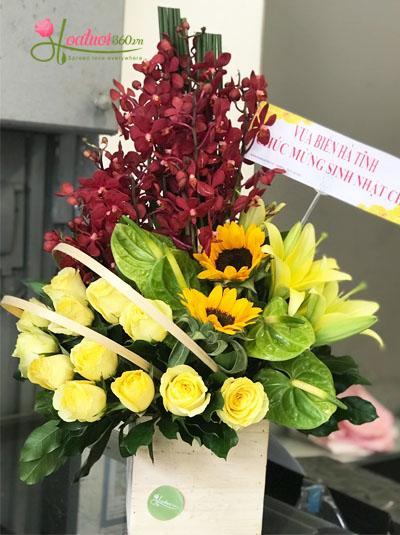 Hoa tươi chúc mừng- Niềm vui