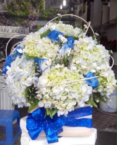 Hộp hoa cẩm tú cầu