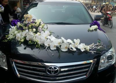 Xe hoa cưới - Yêu em thiên trường địa cửu