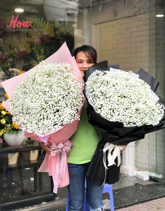 Hoa sinh nhật sang trọng - hoa baby Hà Lan