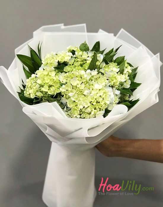 Cẩm tú cầu loài hoa em thích