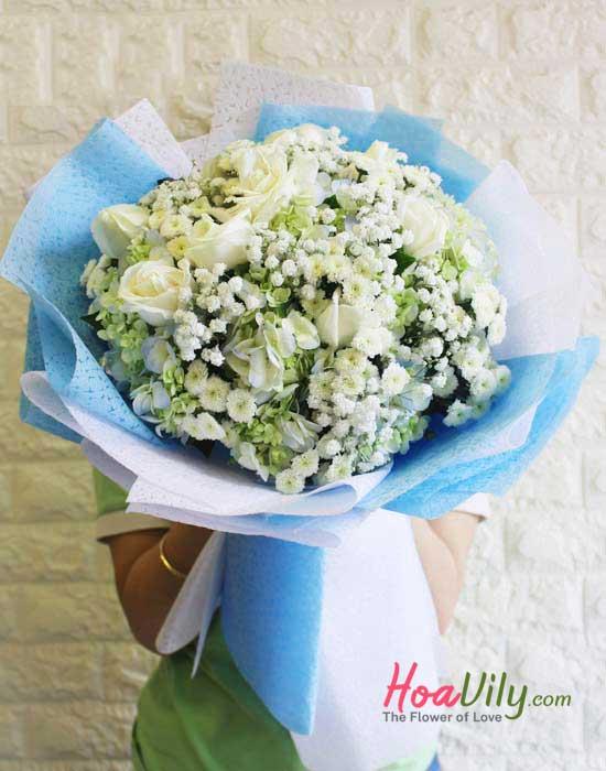 Hoa cẩm tú cầu màu trắng
