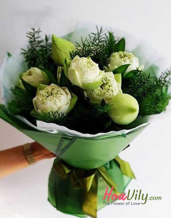 hoa sen dâng phật
