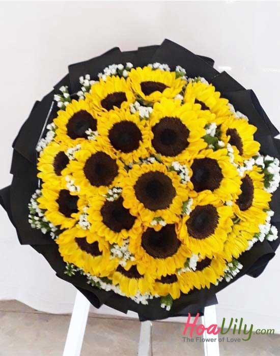 đặc điểm hoa hướng dương