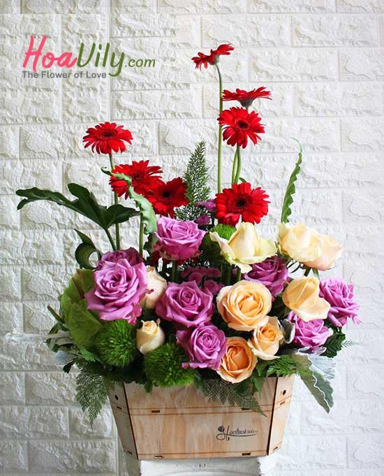 Hoa sinh nhật - nét quyến rũ