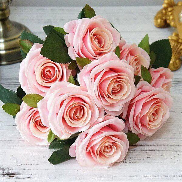 Hoa hồng đẹp dịu dàng