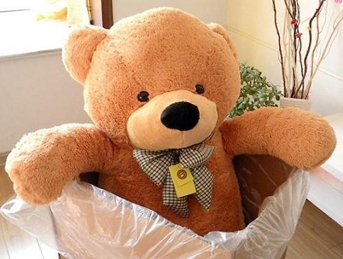 Hãy chọn những chú gấu bông đẹp nhất để tặng người yêu thương