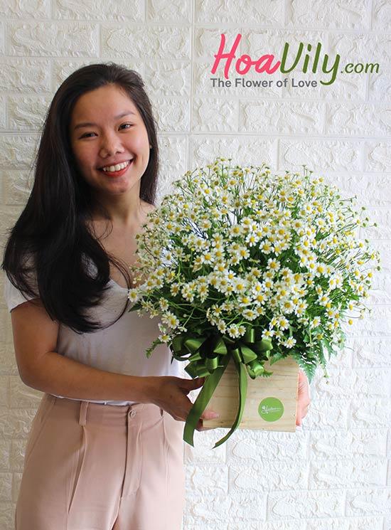 Hộp hoa cao cấp cúc tana