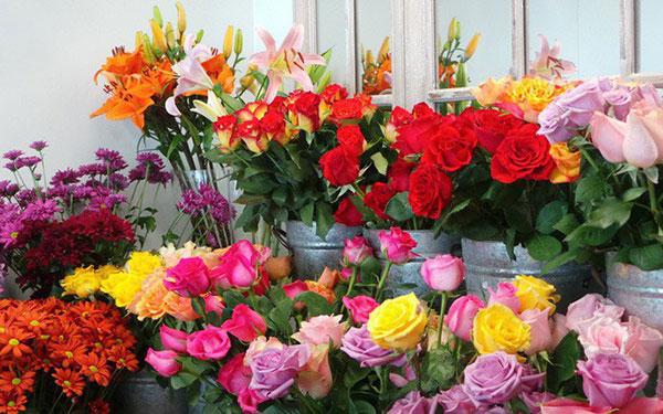 Loại hoa tượng trưng cho tình yêu